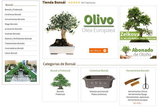 planetahuerto-bonsai